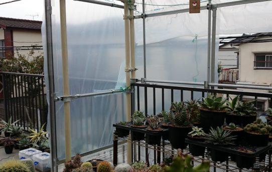 温室作り Part.4