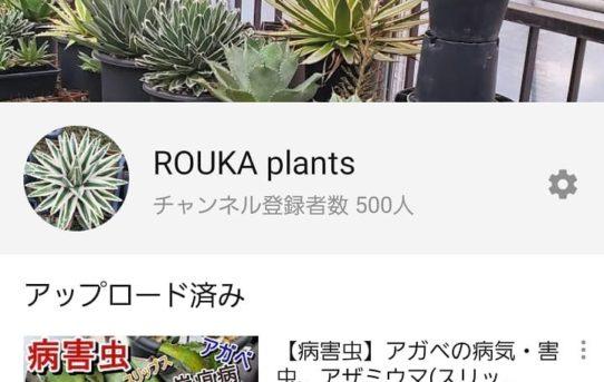 チャンネル登録500人!ありがとうございます