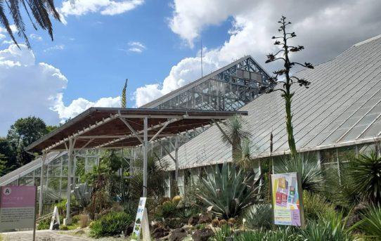 筑波実験植物園 第3部